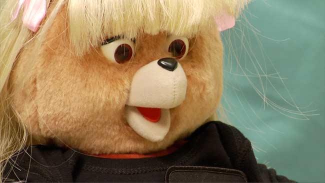 Twitter Teddy